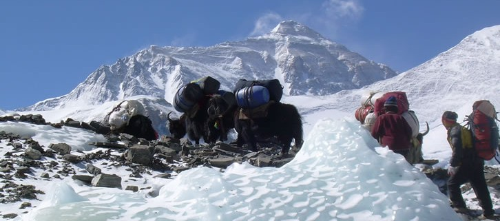 Everest Adavnace Base Camp